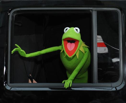 Kermit the Frog's Alleged New Girlfriend