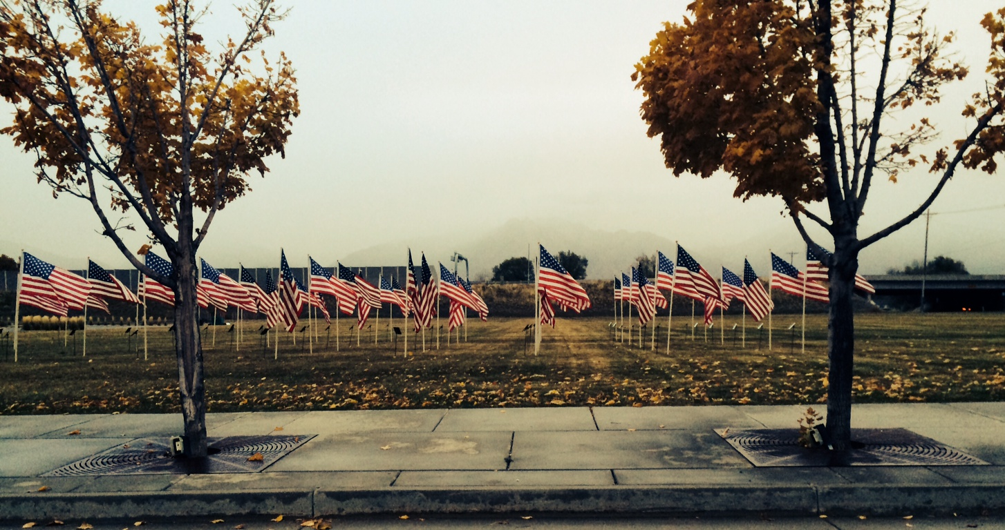 taylorsville honoring combat veterans on veterans day gephardt daily flags of honor veterans day 2014 2
