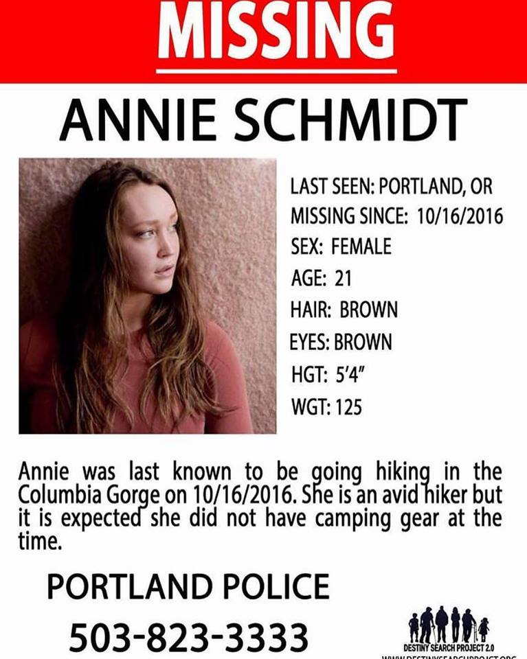 Search for Annie poster. Image: Facebook/The Piano Guys