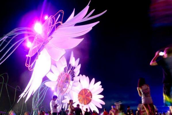 Thousands Attend EDC Music Festival