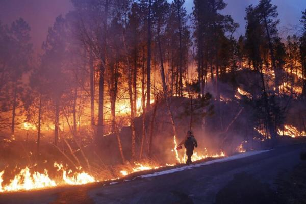 Huge Black Hills wildfire 53 percent contained