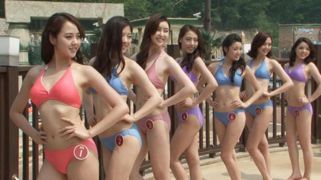 country search korea south single women