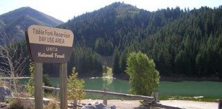 Tibble Fork Res 01