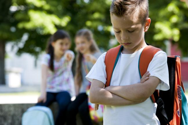 Fewer students Bullied at School in 2013