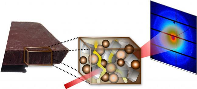 Researchers-uncover-reasons-behind-bloom-found-in-chocolate