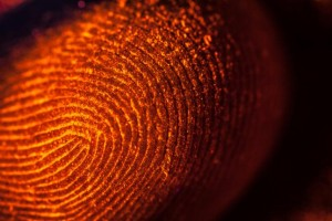 Study-Fingerprint-test-may-accurately-detect-cocaine-use