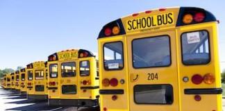 School Bus Hits Man In South Salt Lake Crosswalk