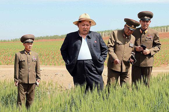 Kim Jong Un's Weight Gain