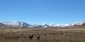 Andes To Lose A Third Of Its Precipitation