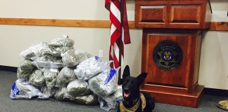 Marijuana Seized Traffic Stop Washington County