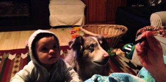 """Utah Dog Upstages Baby By Saying """"Mama"""" For A Bite Of Food"""