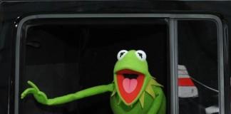 Kermit the Frog's Alleged New Girlfriend