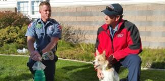 WVCFD Deploys Pet Rescue Kits