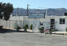 Bunny Ranch Brothel To Offer Student Debt Relief