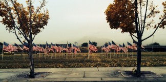 Flags of Honor - Veterans Day 2014 (2)