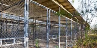 Guantanamo-detainee-repatriated-to-Mauritania