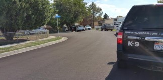 Shooting In Taylorsville