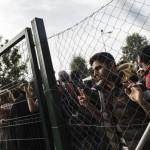 Governors: No Syrian Refugees