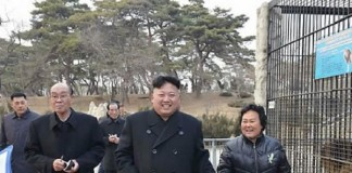 Dozens-of-animals-suffocated-in-North-Korea-zoo-source-says