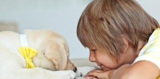 Dog May Reduce Childhood Anxiety