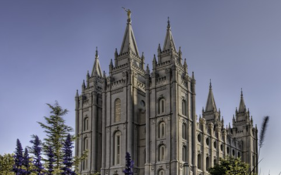 dating ideas for lds youth The church of jesus christ of latter-day saints sets high standards for courtship for young adults they are expected to wait until the age of 16 to begin dating.