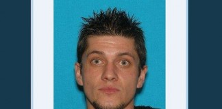 Layton Police Search
