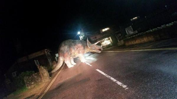 Triceratops Obstructs Traffic