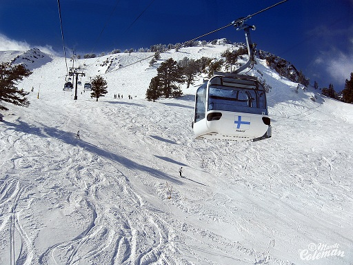 Snow Basin Ski Accident