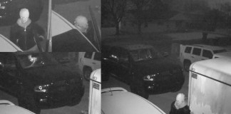 Burglarized Vehicles In Cottonwood Heights