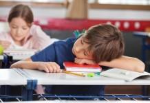 Brain-observed-filing-memories-during-sleep