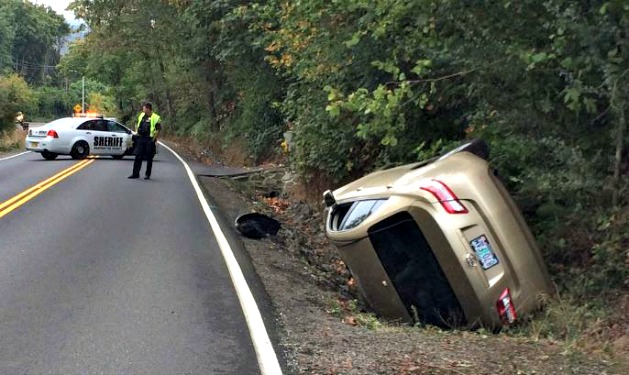 Spider blamed for causing rollover car crash in Oregon