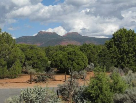 Obama Designates Bears Ears and Gold Butte As New National Monuments