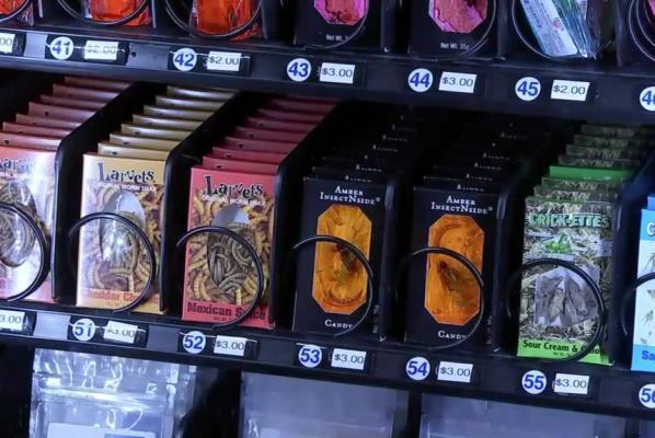 vending machine income
