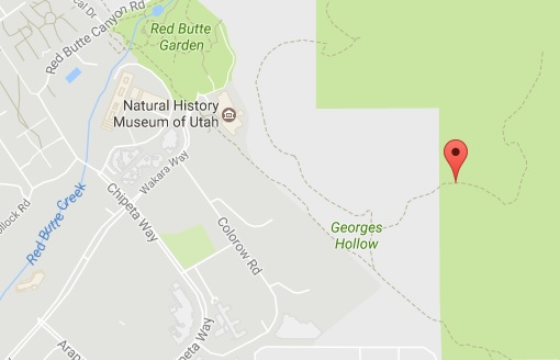 Photo Courtesy Google Maps TAGS Injured Paraglider Living Room Trail