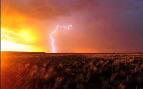 Family dog saves lives of two Utah girls struck by lightning