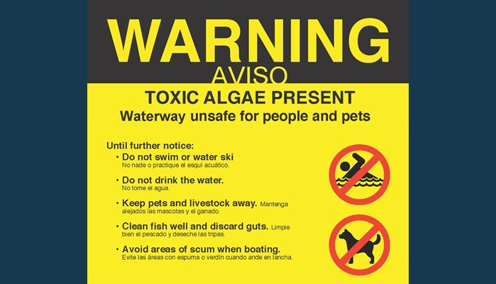 Algae-related toxins found in Jordan River