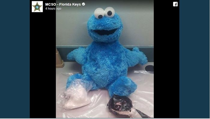 Florida police find cocaine stashed in Cookie Monster doll
