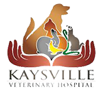 Kaysville Animal Clinic